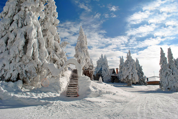 https://mypamporovo.net/images/gallery2/Pamporovo-Winter-6.jpg